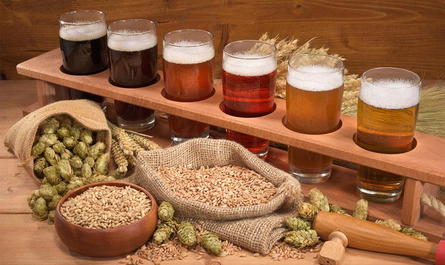 Fun Things to Do in Knoxville: Breweries with Beer Gardens